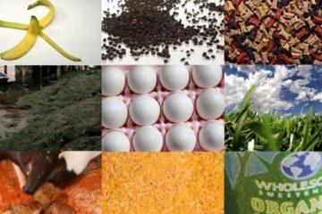 fertilizatori naturali pentru flori