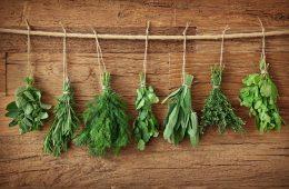 4 plante medicinale esentiale in bucatarie